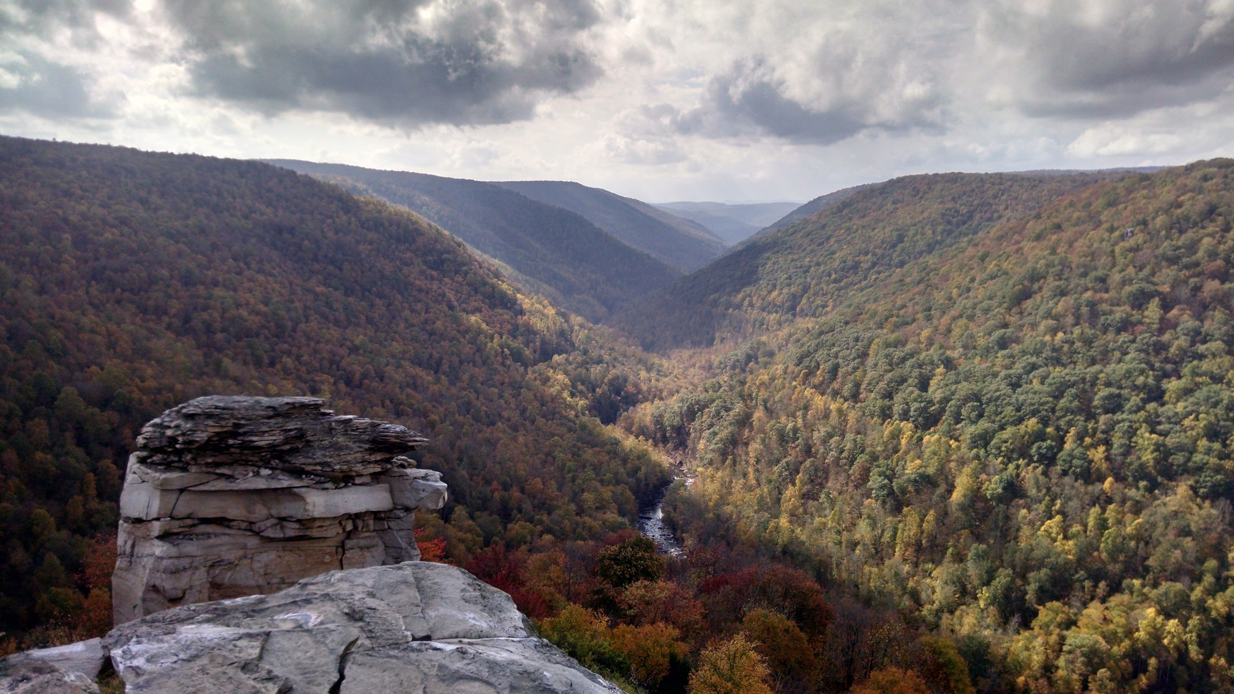 Lindy Point at Blackwater Falls State Park with fall foliage